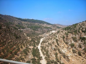 Pictures from Lynn's trip to Israel.