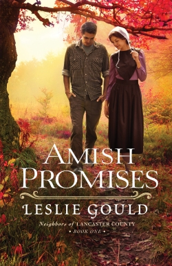 Amish Promises